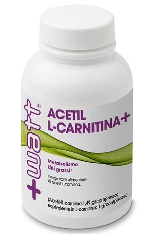 ACETIL L CARNITINA+ 100CPR